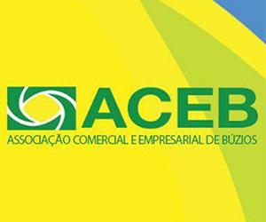 ACEB 300_250